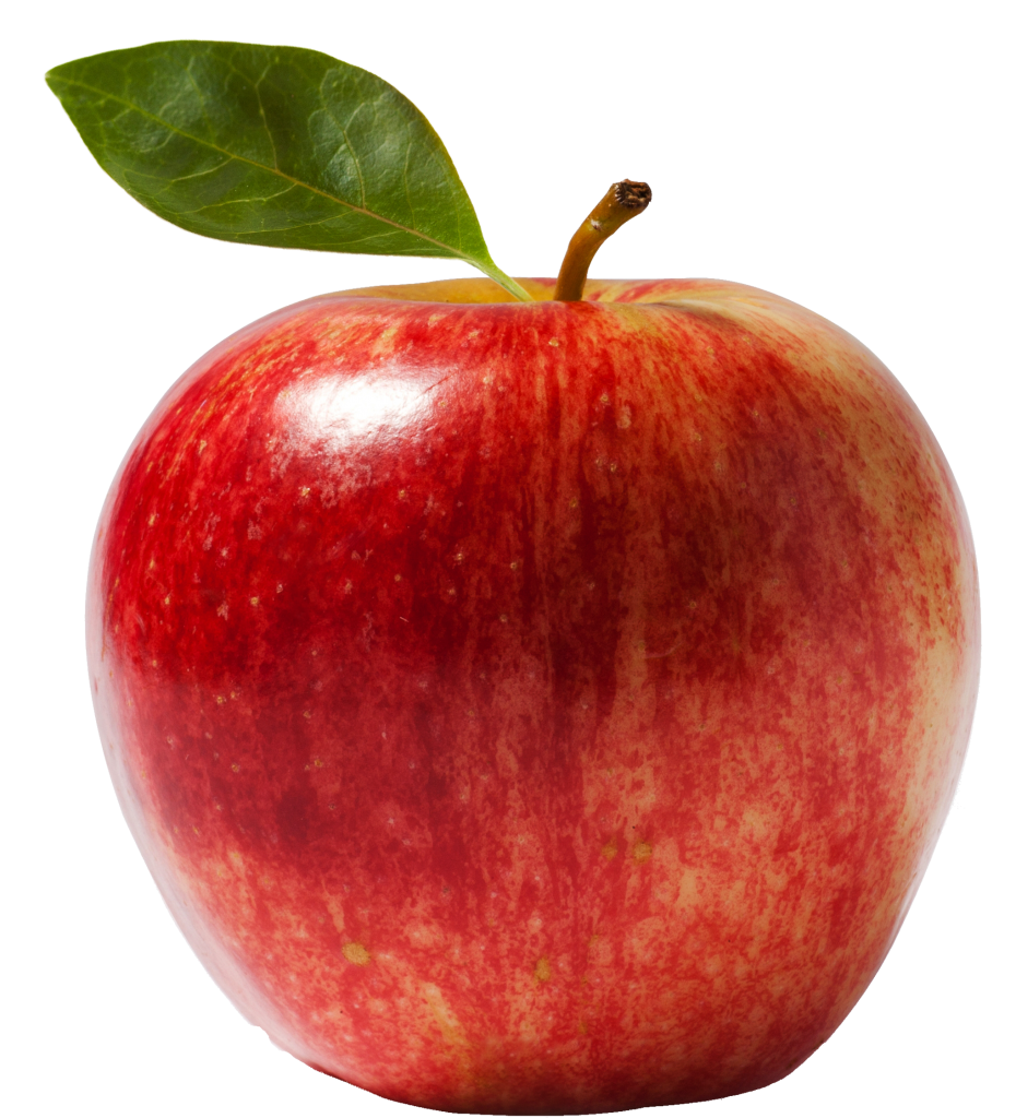 apple picture naming for speech therapy