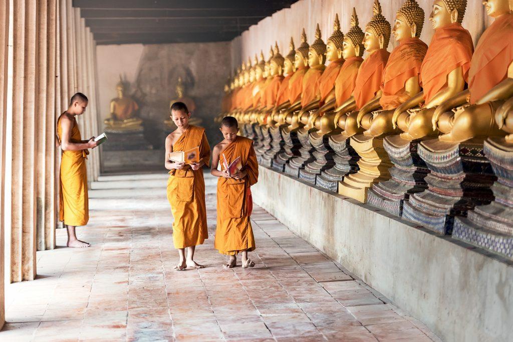 monks orange picture description for speech therapy aphasia, motor speech, visual neglect