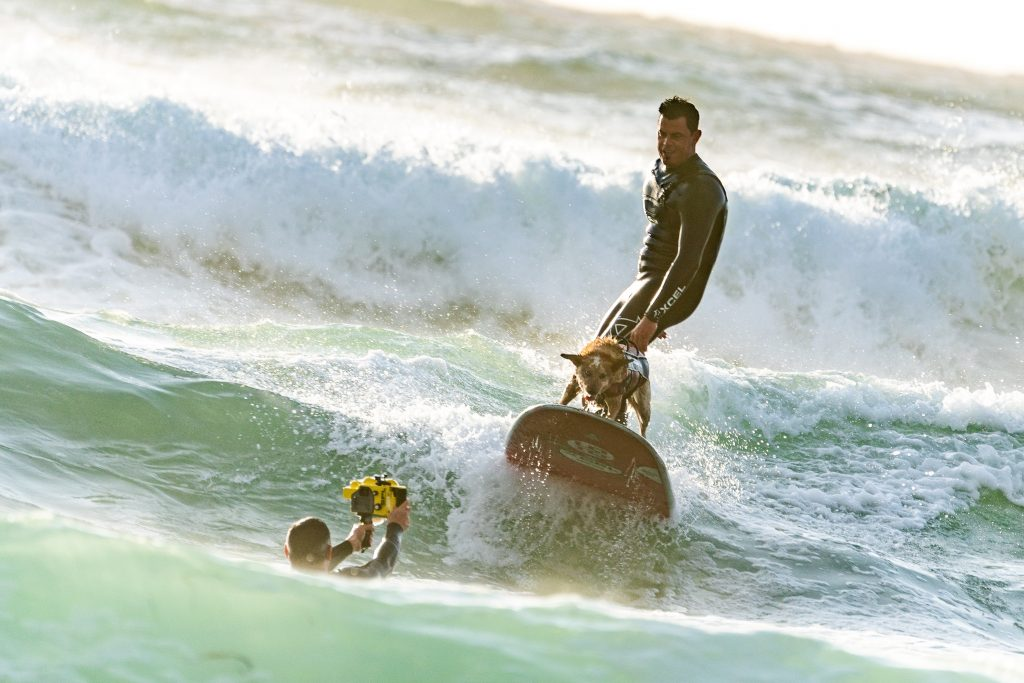 surfing adventure picture description for speech therapy aphasia, motor speech, visual neglect